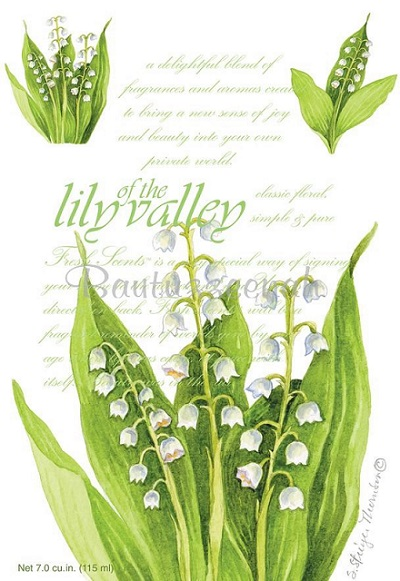 FRESH SCENTS   LILY OF VALLEY